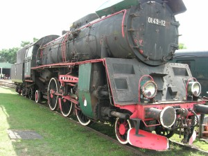DSCN5544